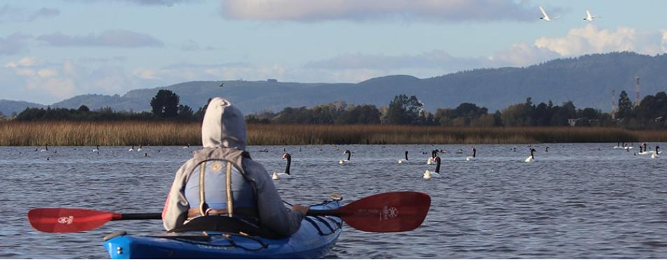 kayak angachilla