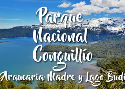 Parque Nacional Conguillío, Araucaria Madre y Lago Budi
